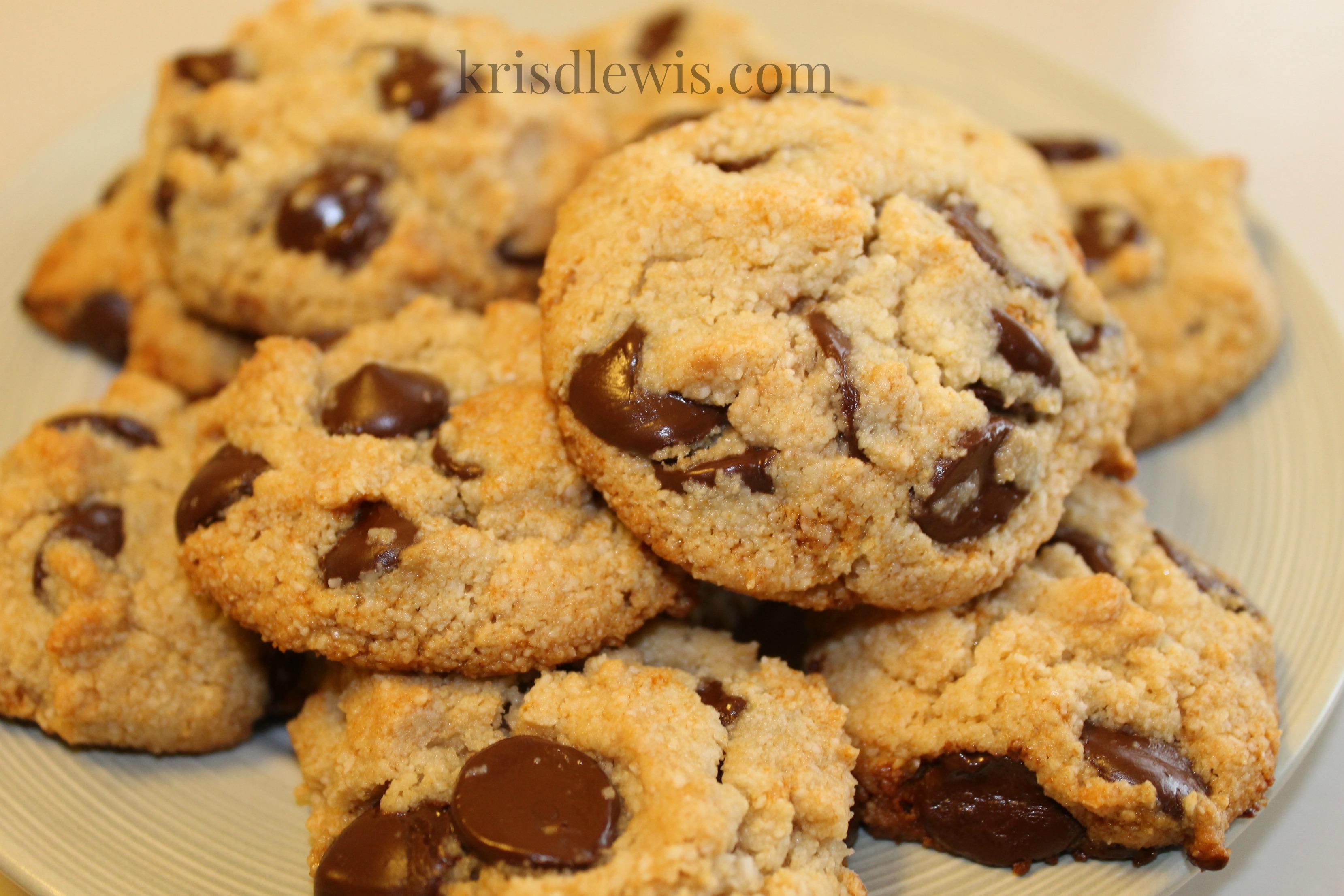 ... ground almond flour meal 1 4 c raw honey 1 3 c dark chocolate chips